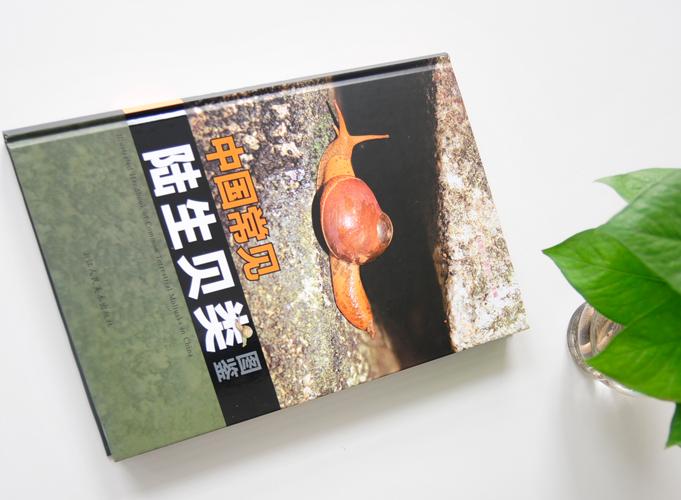 中国常见陆生贝类图鉴  精装书 精装画册印刷
